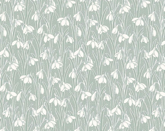 Hesketh Pale Green from The Hesketh House Collection for Riley Blake