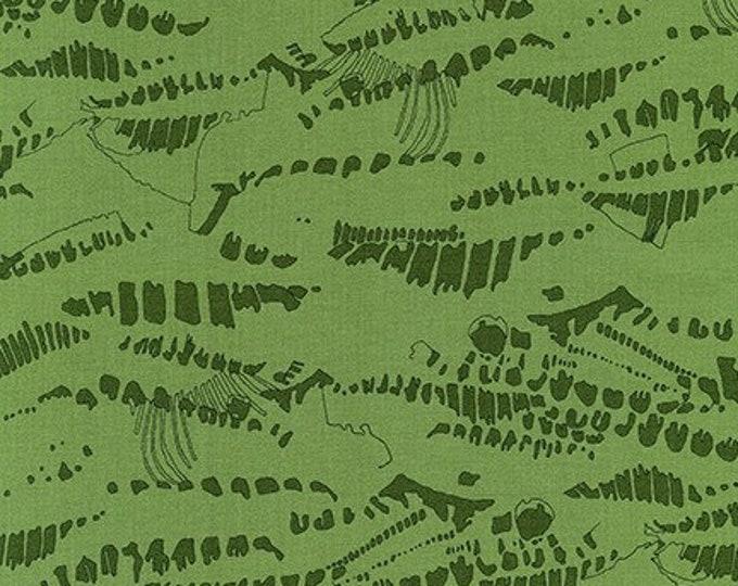 IVY by Carolyn Friedlander from Jetty for  Robert Kaufman Fabrics
