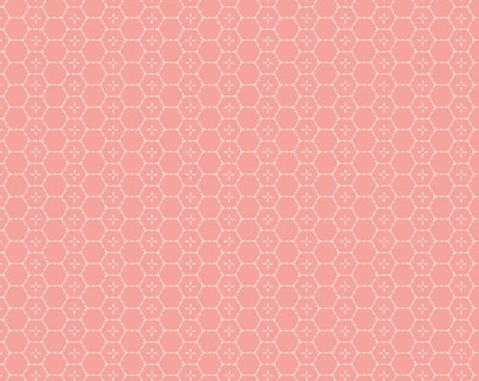 Bound Treasures Blush from Picturesque by Katarina Roccella by Art Gallery Fabrics