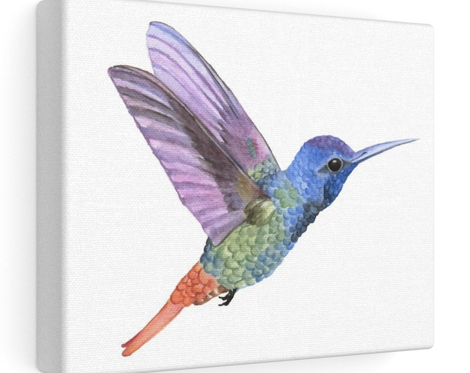 Watercolor Hummingbird Stretched Canvas Print