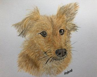 Custom pet portrait watercolor painting