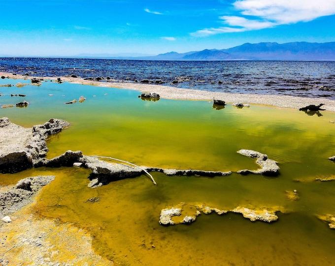 Salton Sea Death Beach Fine Art Photography