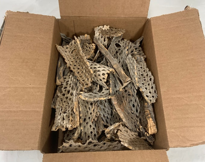 20 lb box of Teddy Bear cholla pieces for arts and crafts, hermit crabs, aquariums and much more. Free shipping