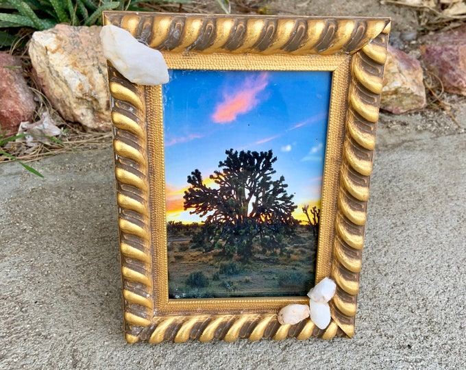 Vintage frame with photo of Grandfather Joshua Tree,photo of huge Joshua Tree Photo shot in the California Desert near Kelso Train Depot