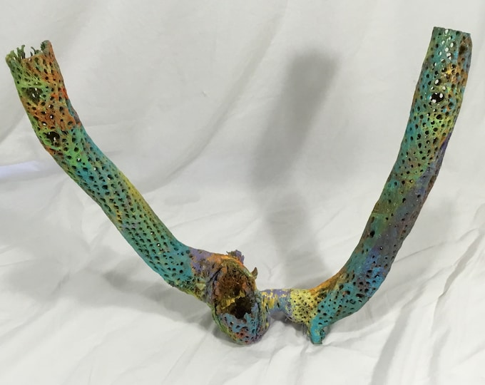 Huge Custom one of a kind hydro dipped cholla skeleton wood. Home Decor. Jewelry display and more Free Shipping