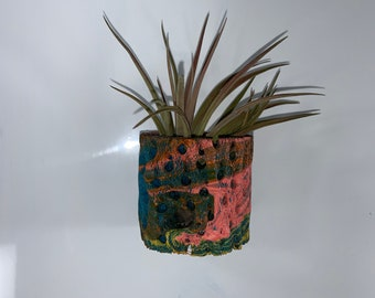 Tillandsia with teddy bear cholla skeleton wood with air plant. Includes suction cup mount for glass.  Handmade and unique. Free Shipping
