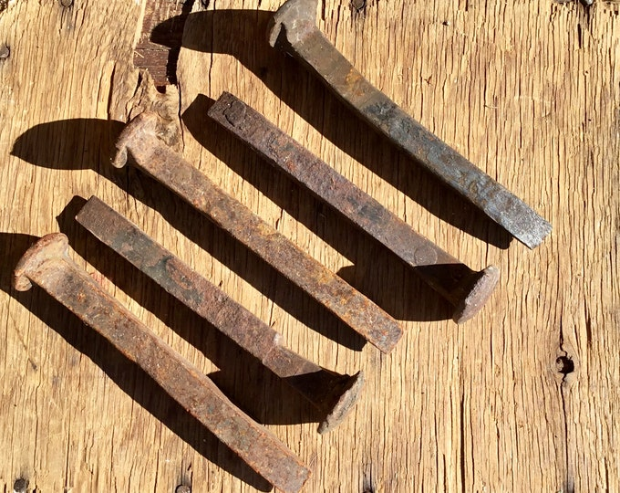 Lot of 10 Rusty 100 plus year old Railroad Spikes found in Mohave Desert Southern California