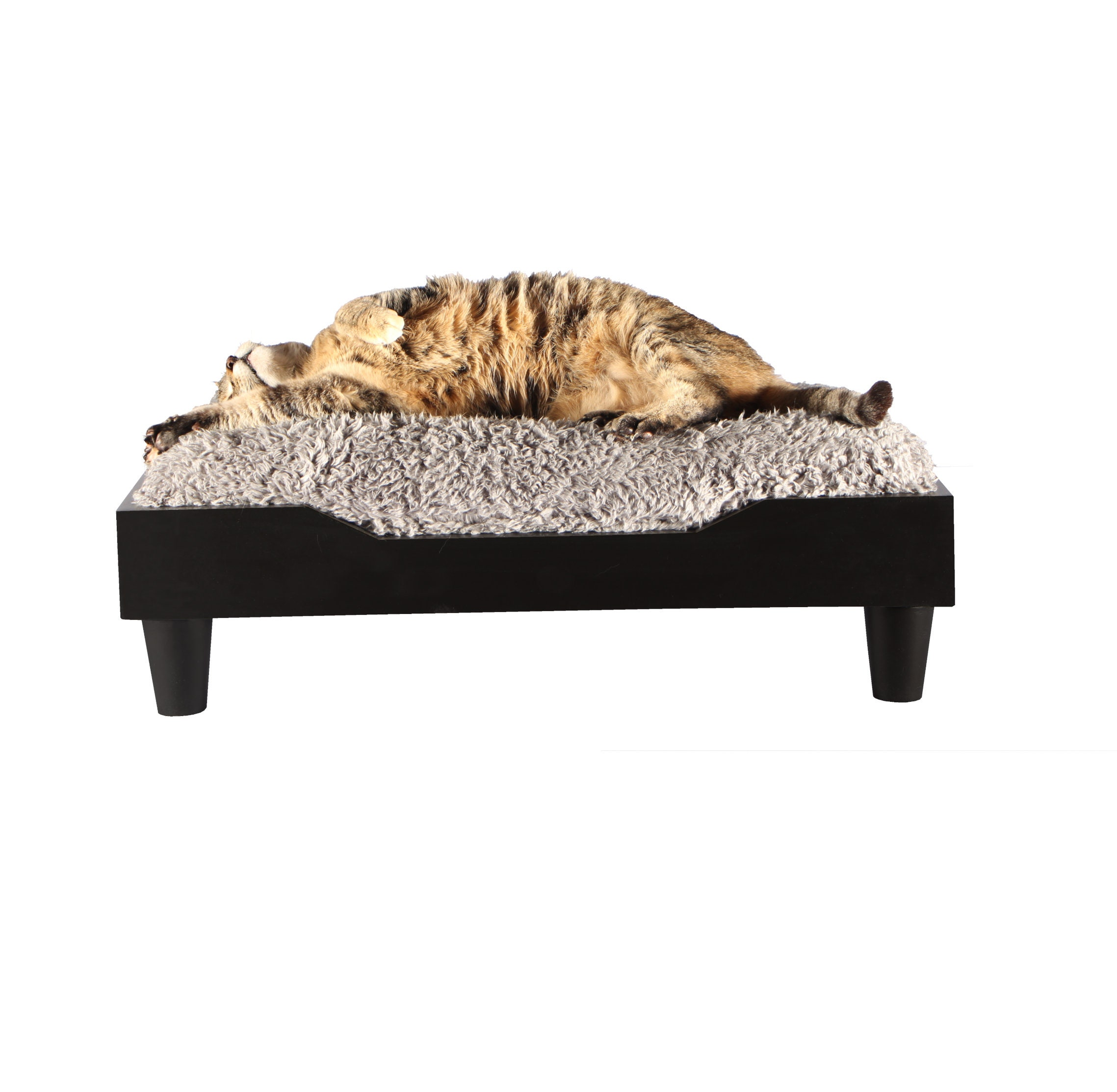 Braumhaus Uber Luxury Small Dog Pet Cat Bed Modern Contemporary Stylish Free Shipping