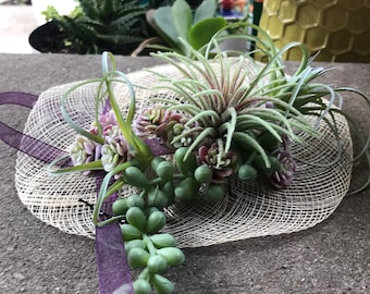 Decorative or Wearable Succulent Derby Hat