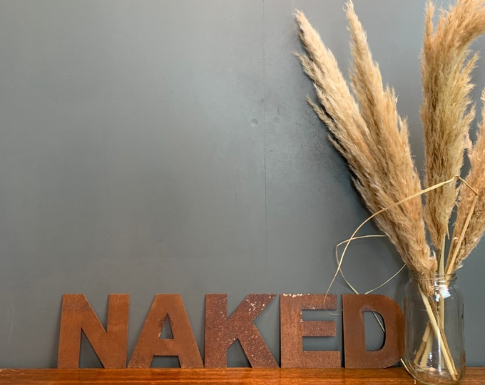 Rusty Metal Letters /  Metal Wall Art / Bathroom Sign / Bedroom Sign / NAKED