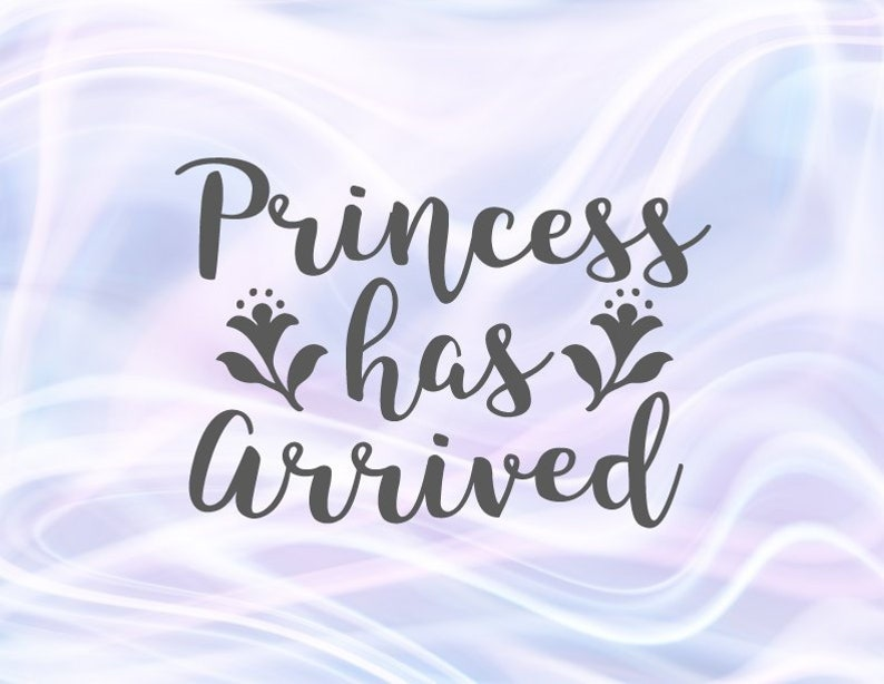 0e3953e81 Funny Baby Girl Onesie SVG File for Cricut Saying Princess Has | Etsy