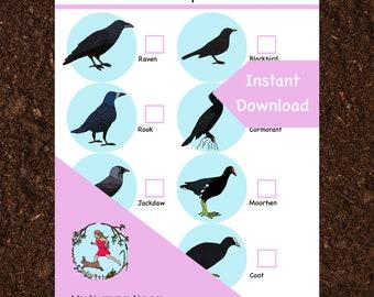 Nature scavenger hunt // Rooks and Ravens (printable PDF)