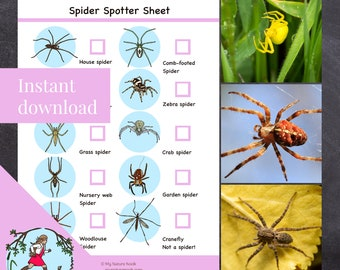 Nature scavenger hunt // Spiders (Printable PDF)