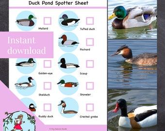 Nature scavenger hunt // Ducks (Printable PDF)
