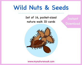 Tree nuts and seeds - Cards - Digital - Printable PDF.