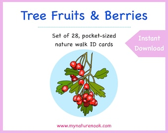 Tree fruits and berries - Printable PDF nature walk cards for kids