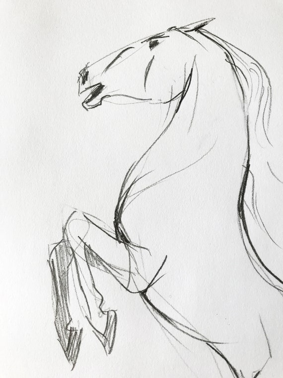 Country style decor. Scandi horse wall art or Horse lover gift Equine art Original hand drawn mustang horse drawing graphite drawing