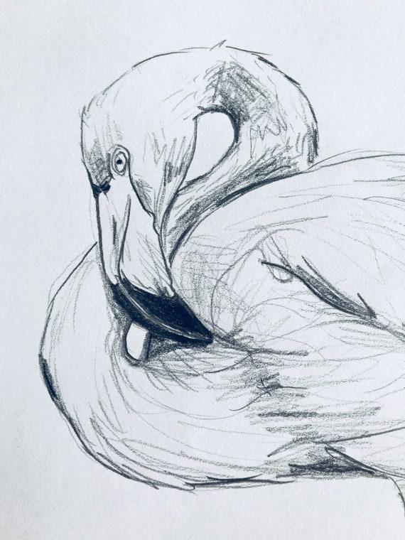 Original Dessiné à La Main Noir Et Blanc Flamant Rose Dessin Oeuvre Oiseau Exotique Oiseau De La Floride Oiseau Tropical Cadeau Damant Doiseau