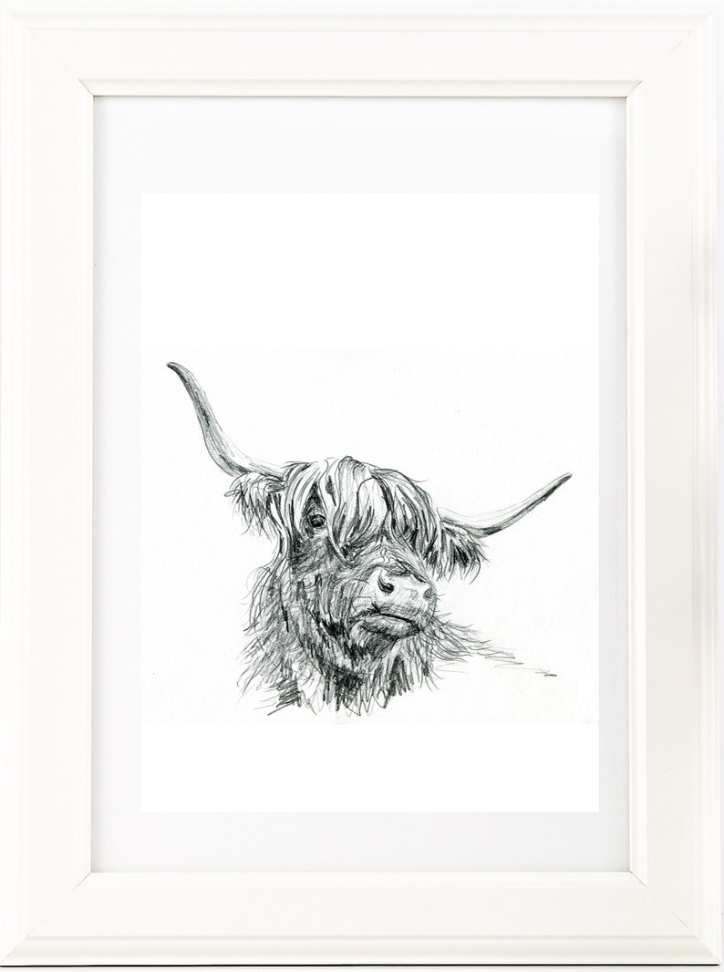 Original highland cow art drawing print black white scottish cow pencil sketch unique gift for her boho scandi or country style decor