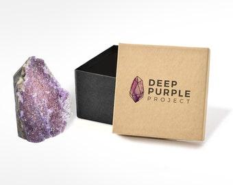 Deep Purple Project
