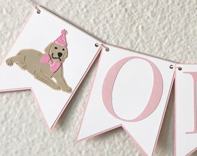 Picture Perfect Pup High Chair Banner - Dog Birthday Party Banner, Pink and Blue Birthday Party Decor, First Birthday, One, Two