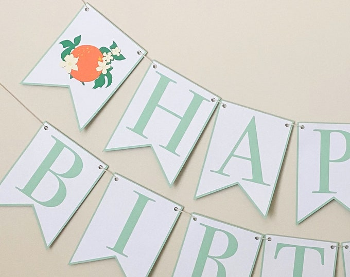 Orange Blossom Happy Birthday Banner - Darling Clementine, Little Cutie Birthday Party Banner, Girl's First Birthday Citrus Party Decor,