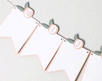 12 Month Sweet Peach Photo Banner - Sweet as a Peach, Little Peach, Georgia Peach, First Birthday, Wall Decorations, First Year