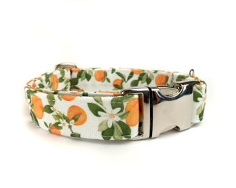 White dog collar with oranges and leaves VALENCIA,  fabric dog collar, Eco Canvas