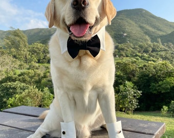 Dog Wedding TUXEDO BLACK Bow Tie collar & cuff set