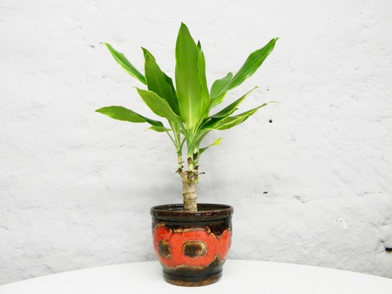 60s Plant pot/Flower pot/Ceramic Pot/Vintage flower pot/overpot brown Red