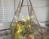Geometric air plant terrarium, air plant DIY. Indoor plant. Copper pyramid glass terrarium
