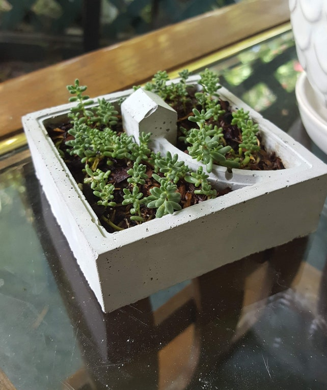 Tiny House Planter For Succulents And Small Office Plants. A | Etsy
