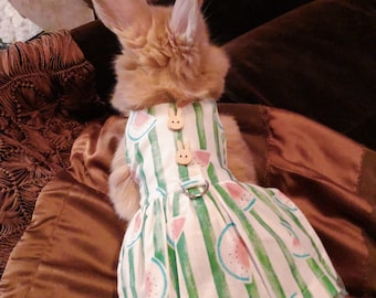 b5e6d333b Pet rabbit clothing