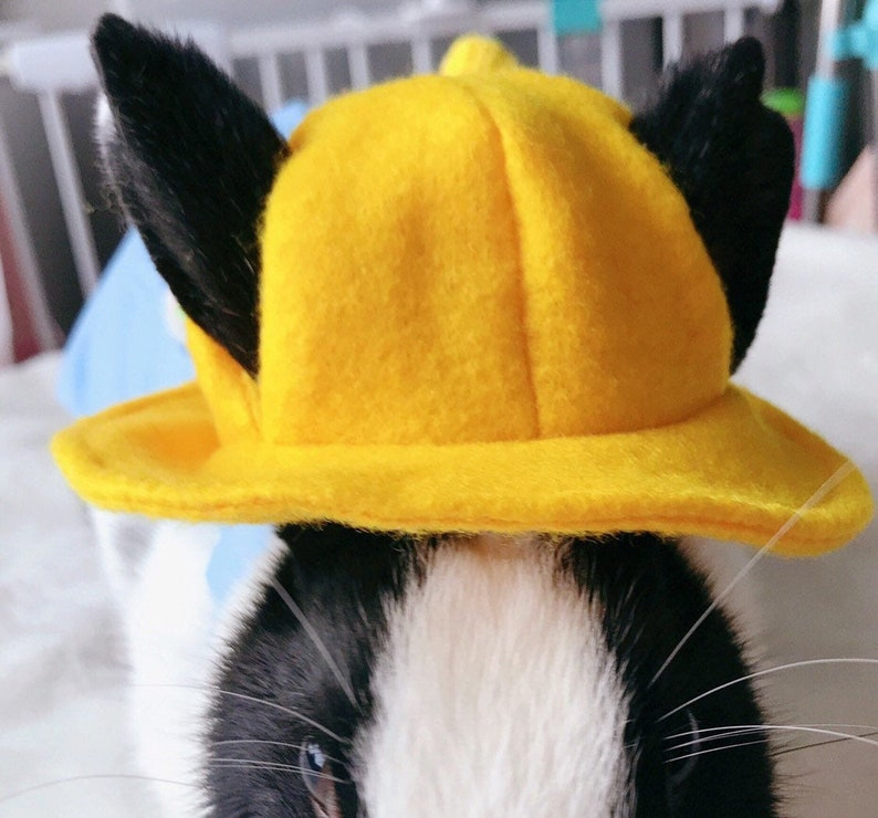 Pet hat hat for pets cute hat for pets hats for Bunny image 0