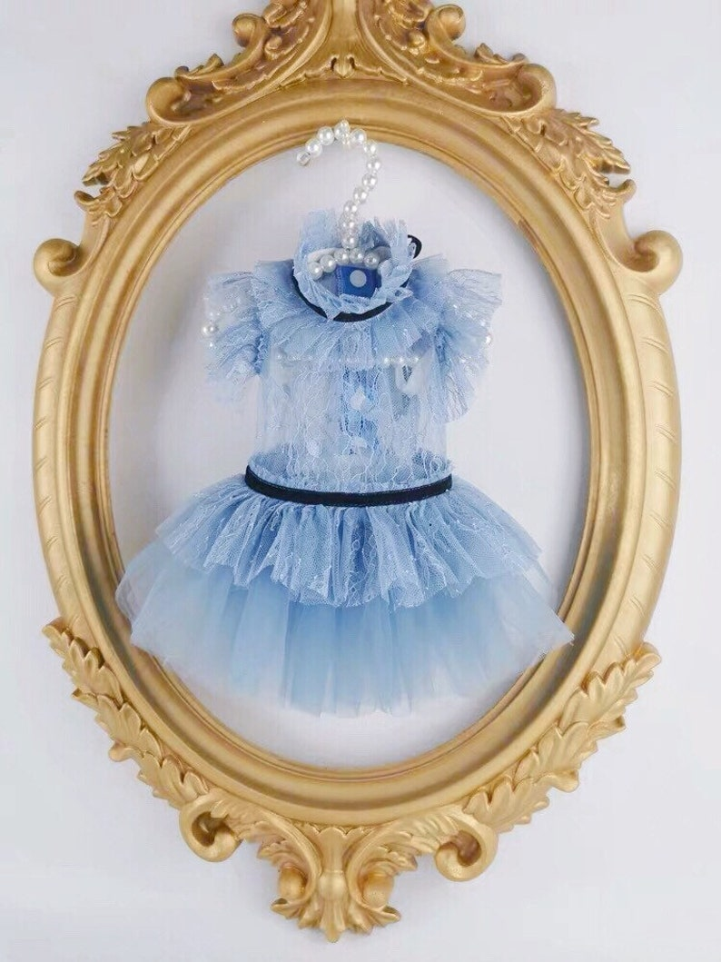 Designer Custom Made See Through Dress for Dog Cat and Bunny image 0