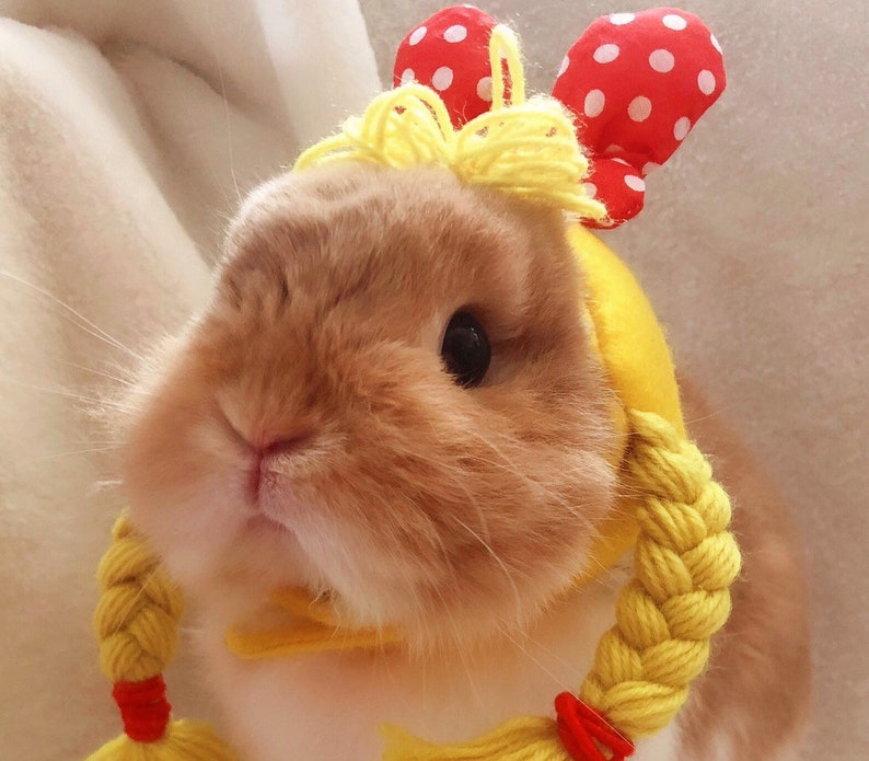 Wigs pet costume rabbit hat hat for rabbit hat for small image 0