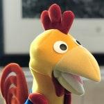 Little Genius Rooster