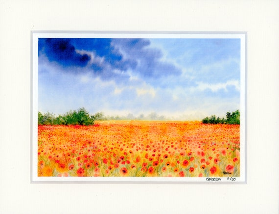 "Mounted 9"" x 7"" Limited Edition Print on watercolour paper, Poppies. Only 50 available worldwide from an original watercolour poppy painting"