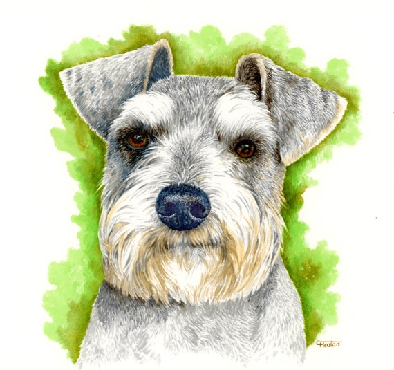 Deluxe original watercolour Pet Portrait, commissioned painting from your photos comes bevel mounted, special pre-Christmas rush sale price