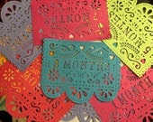 First Year Birthday Banner, Day 1, 12 Months, Papel Picado