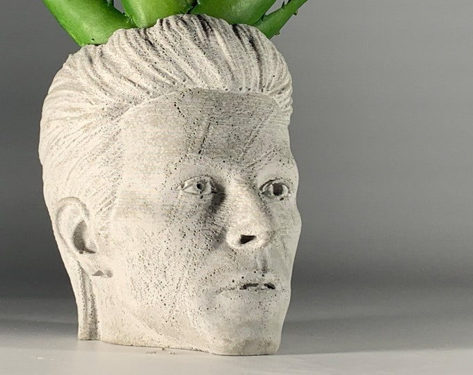 David Bowie - Ziggy Stardust - POP Music -  Succulent Planter - Dj Gift - Air plant - Music Gift