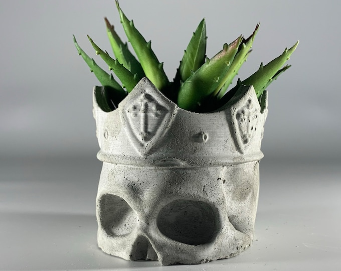 SKULL concrete planter - ITALY 18/19 CENTURY - Scull with crown -  Succulent Planter - Dia De Los Muertos - Air plant - Skull