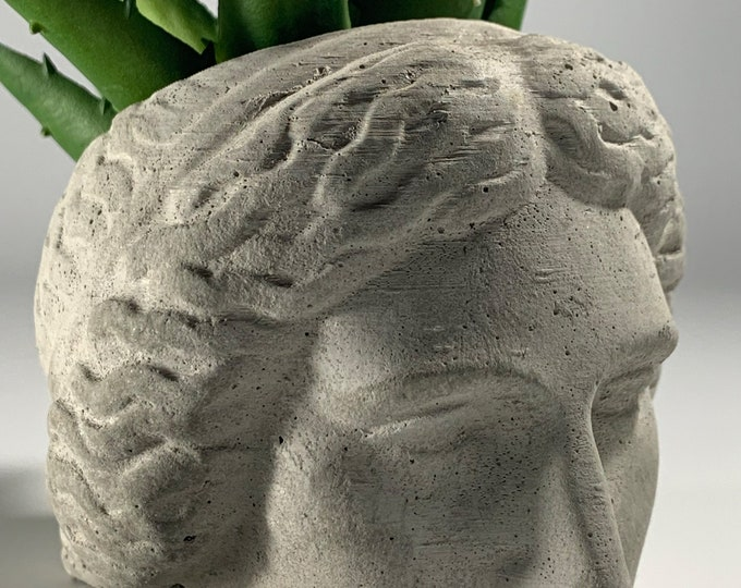 ARTEMIS FACE PLANTER  - Artemis Head Planter - Head Planter - Sculpture Planter - Greek Goddess - Home Decoration - Home Decor