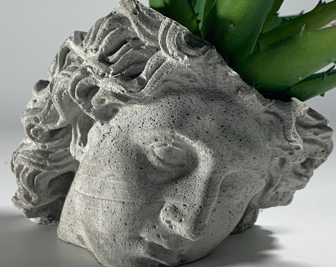 ALEXANDER FACE PLANTER - Alexander The Great  - Head Planter - Sculpture Planter - Alexander Macedonia - Home Decoration - Home Decor
