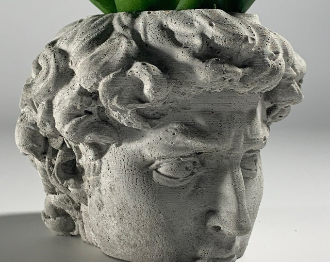 DAVID FACE PLANTER  - David Head Planter - Head Planter - Sculpture Planter - Michelangelo - Home Decoration - Home Decor