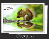 Note Cards Box of 8 Cards \ You say Acorn, I say Nuts \ note cards with 1 design \ Just a Note Card \ A2 Cards