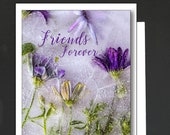 Friendship Card \ You've Got a Friend in Me! \ Card for a women or a girlfriend \ WHIMSICAL \  A6 Cards