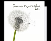 Friendship Card \ Some say it's just a Weed, but... \ I say it's a Wish \ Card for a girlfriend \ WHIMSICAL \ A6 Cards
