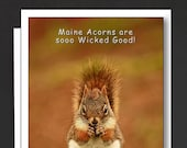 Maine Humor Card \ Friendship Card \ Maine Acorns are sooo Wicked Good! \ Just like you! \ A6 Cards