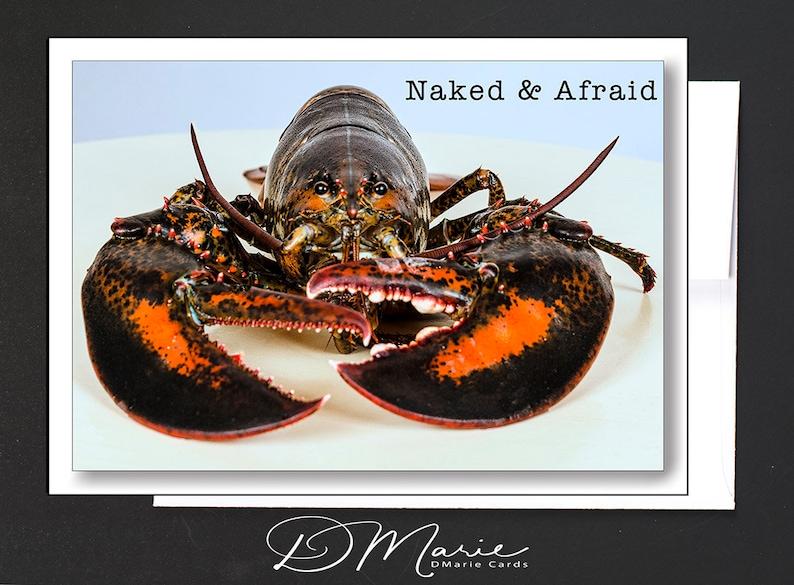Mainah Humor Card  Love  Card  Naked & Afraid  I can almost image 0